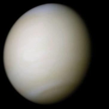 weight on Venus